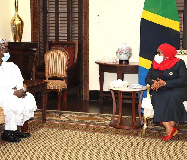 Presentation of Letters of Credence  of H.E. Amb. Hamisu Umar Takalmawa to the President of the United Republic of Tanzania H. E. Samia Suluhu Hassan
